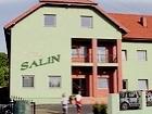 Salin
